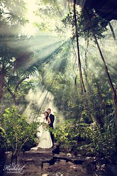 The Jungle in Playa Del Carmen, Mexico. We burned the local Copal incense to intensify the sun's rays.