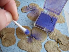 Butterfly Drawing with Hydrangea Petals
