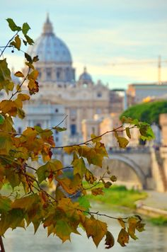 Autumn in Rome  ♠ by Yuri Borodianski on 500px