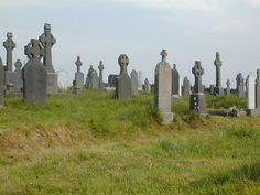 When searching old graveyards in Ireland, consider taking gardening gloves and a walking stick.