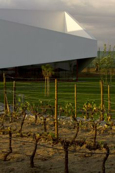 Vineyard´s L'And Vineyards Hotel by PROMONTORIO. Photography © Fernando Guerra | FG+SG.