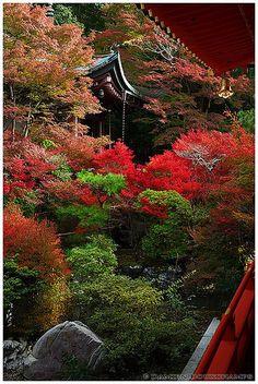 Bishamon-do temple in autumn, Kyoto