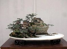 a GREAT MiniScape smile emoticon Penjing tray, Bonsai trees, real rocks, miniature Diorama buildings