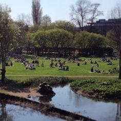Mange bruger tiden i #eventyrhaven når solen skinner, mon ikke de har medbragt lidt mad og drikke og hygger igennem? Odense, Bruges, Monet, Dolores Park, Mad, Travel, Viajes, Trips, Tourism