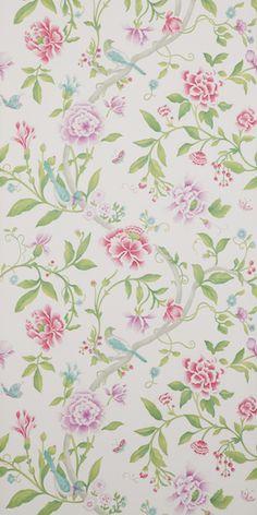 bird and flower wallpaper