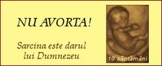 banner-anti-avort.png (19,238 bytes)