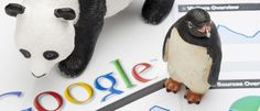 Has your website been pecked by Penguin or pawed by Panda? Here are a few tips on how to get your websites listings back on track. Google Penguin, Seo Report, Seo Techniques, Seo Sem, 242, Seo Strategy, Best Seo, Seo Company, Seo Tips