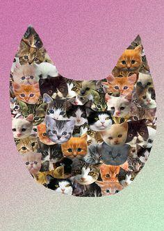 Cat Collage | cat_collage_ak.jpg