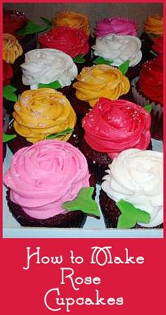Easy decorating tutorials- how to make rose cakes and cupcakes.