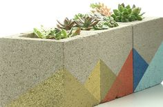 Put Succulents On Display With These Mod Concrete Planters