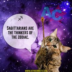astroconnects - Posts tagged cats in space Sun Sign Moon Sign, Moon Signs, Sagittarius Personality, Famous Comedians, Birth Order, Meeting Someone New, Chinese Astrology, Astrology Numerology, Yearbook Photos