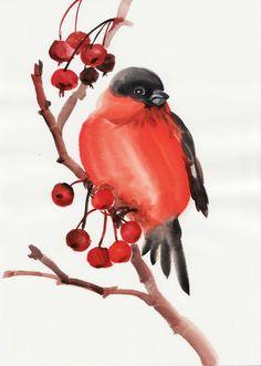 Картинки по запросу снегирь рисунок