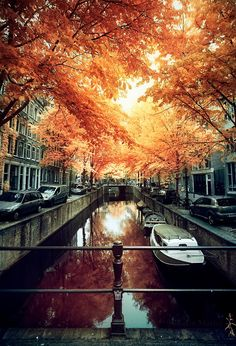 Amsterdream by mattei