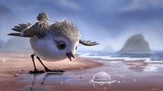 Meet 'Piper' - Pixar's Upcoming Short Film by Alan Barillaro | Pixar Post