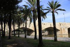 Bellissima riqualificazione del letto del fiume turia - Recensioni su Antiguo Cauce del Rio Turia, Valencia - TripAdvisor