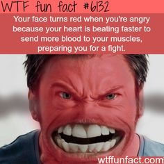 Why your face turns red when you are angry - WTF fun facts