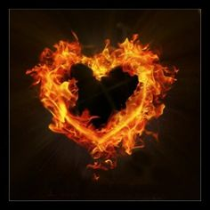A dragons heart full of fire and flames anger and rage. This heart usually wishes for one thing, and that one thing is the only thing that can calm that heart. A heart of passion..of love..