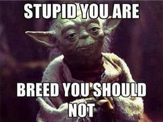 Unfortunately, it seems to be  mostly stupid people who are breeding