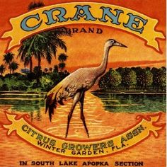 Winter Garden, Florida Crane Bird Orange Citrus Fruit Crate Box Label Art Print