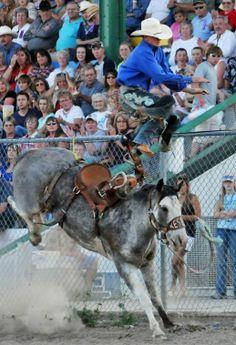 saddle bronc riding  | Northwest Montana Fair Rodeo Saddle Bronc Riding - Home - The Daily ...