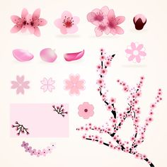 Variety of cherry blossoms Free Vector Watercolor Leaves, Watercolor Background, Floral Watercolor, Cherry Blossom Background, Cherry Blossoms, Crayola, Cosmos Flowers, Floral Ribbon, Flower Template