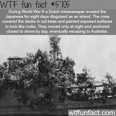 How a dutch ship evaded the Japanese for eight days - WTF fun fact - All the Interesting Information You're Wondering Here The More You Know, Good To Know, Did You Know, Just For You, Wtf Fun Facts, Random Facts, Crazy Facts, Random Stuff, Strange Facts