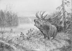 Geweihträger – Jagdmaler Thomas Bold Deer Art, Moose Art, Natur Tattoos, Hunting Art, Ink Pen Drawings, Wildlife Paintings, Cow Art, Art Journal Inspiration, Pyrography