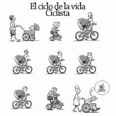 El ciclo de la vida ciclista