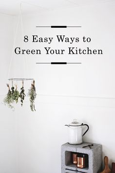 8 Easy ways to Green your Kitchen /