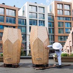 ruches urbaines design suèdes en bois