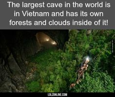 What If We Are The Cave Outside It#funny #lol #lolzonline