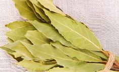 15 Health Benefits of Bay Leaves Burning Bay Leaves, Guisado, Food For Digestion, Cold Symptoms, Laurel Leaves, Natural Home Remedies, Organic Beauty, Health Remedies, Health Benefits