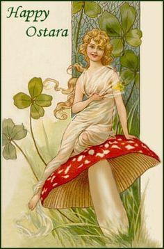mushroom Ostara!