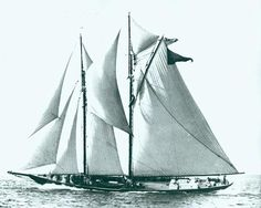 The Schooner 'Gertrude L. Thebaud' in Photo by A. Old Boats, Sail Boats, Wooden Sailboat, Old Sailing Ships, Classic Yachts, Life Aquatic, Sail Away, Tall Ships, Water Crafts