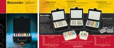 Fully Customizable Catalogs That Speak To The Customer