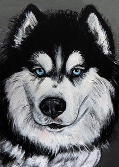Siberian husky dog portrait acrylic on paper by Ornella Di Scala, 20,00 € su misshobby.com