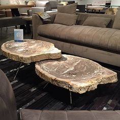 #hpmkt #hpmkt2015    @david_urbiafurniture (David Gevurtz)   petrified wood slab nesting #table Petrified Wood, Wood Slab, Nesting Tables, Accent Furniture, High Point, Recycled Materials, Spring 2015, David, Woodworking