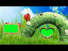 Vedding photo frame green screen HD project #14 - YouTube Frame Download, Download Video, Video Background, Wedding Background, Green Screen Photo, Video Editing Apps, Chroma Key, Video Effects, Video Link