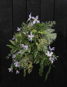 Häät Wedding Plants, Wedding, Valentines Day Weddings, Plant, Weddings, Marriage, Planets, Chartreuse Wedding