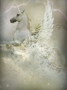 Does A Pegasus Unicorn Count As A Horse?