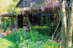 """7 Herbs you can grow in the shade."" Good info for some regions of the Pacific NW:"