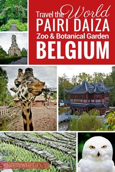Travel the world at Pairi Daiza zoo and botanical garden in Wallonia, Belgium