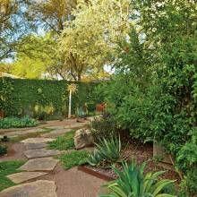 Backyard Remodel - Phoenix Home & Garden