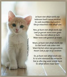 Mooi van Wishes for you . Poem Quotes, Qoutes, Poems, Bad Feeling, Feeling Down, Beautiful Lyrics, Beautiful Words, Live Love Life, Language Quotes