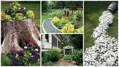 20 de idei de amenajare a gradinii cu flori - Case practice