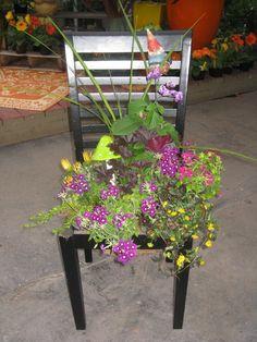 Garden Art, Garden Plants, Garden Ideas, Garden Chairs, Mosaics, Gardening Tips, Fence, This Is Us, Yard
