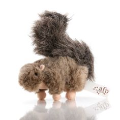 Brinquedo Dog Esquilo  | iBacana
