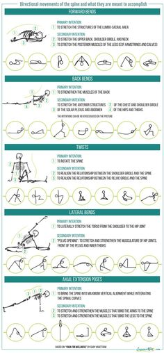 How do you know what a yoga pose is meant to accomplish? Directional movement of the spine infogr