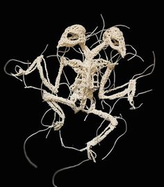 Crocheted animal skeletons show the grim process of death and decay | Dangerous Minds