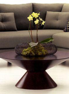 phalaenopsis decoration - Google 検索